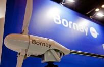 Bornay-Matelec-1.jpg