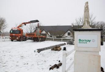 Bornay-Denmark-7.jpg
