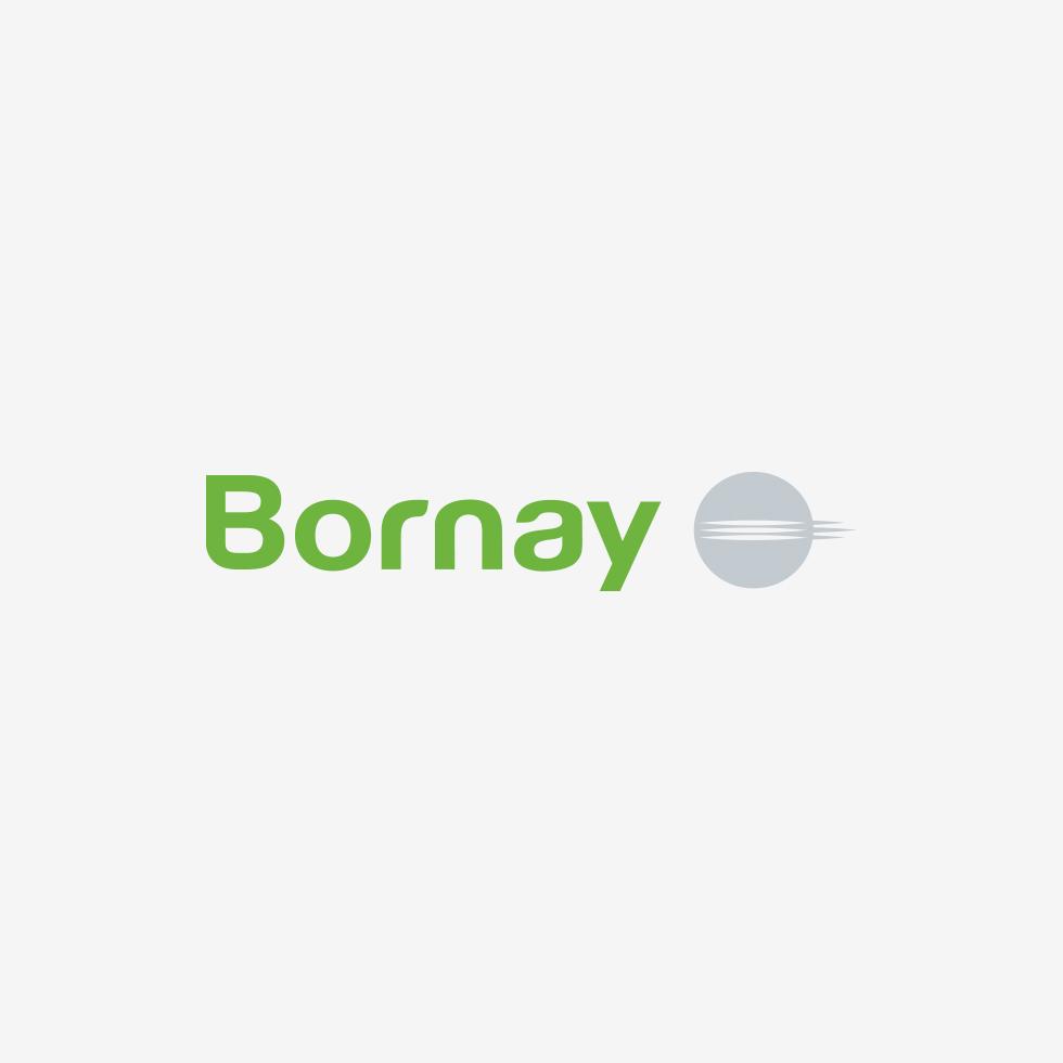 Bornay Presenta Su Nueva Imagen Corporativa Bornay Es